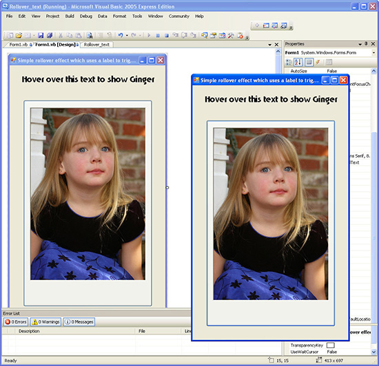 Visual Basic image and text rollovers