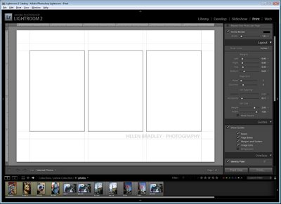 design 745959 How to select and compose a Triptych in Lightroom