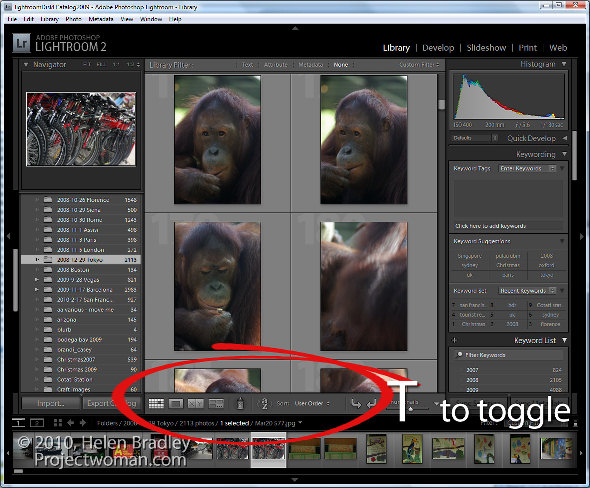 Lightroom panel tricks 2 5 (More) Lightroom Panel Tricks