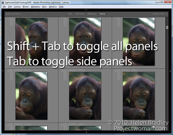 Lightroom panel tricks 3 5 (More) Lightroom Panel Tricks