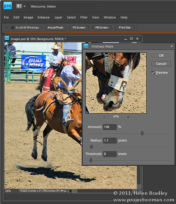 Photoshop Elements unsharp mask sharpen an image1 Step 13   Simple Photoediting workflow   Sharpen the image